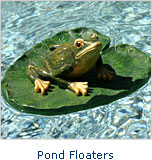 Pond Floaters