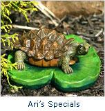 Ari's Specials