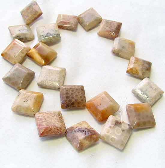 square fossilized coral coin beads
