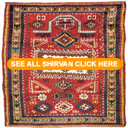 See all our Shirvan rugs click here