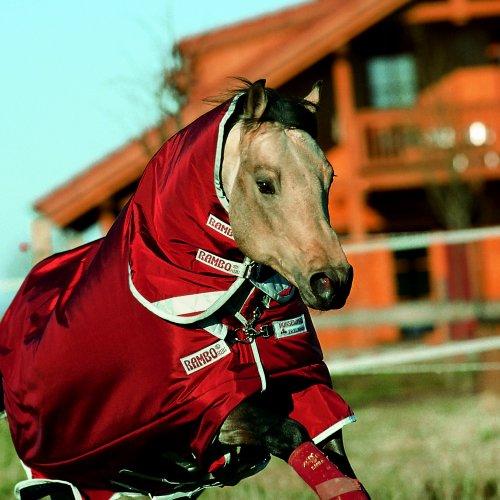 Horseware Rambo Plus Turnout w/la Reflec Strips Lite