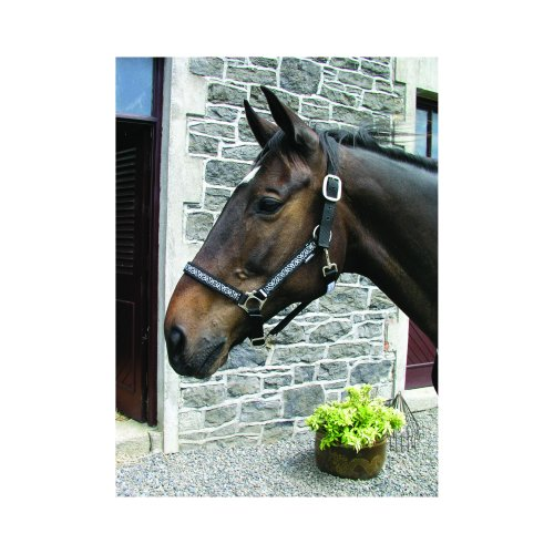 Horseware Head Collar (Clearance)