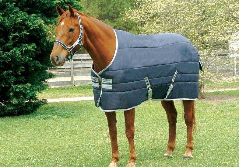 Horseware Amigo Insulator medium