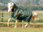 Horseware Rambo Flybuster Plus Fly Sheet