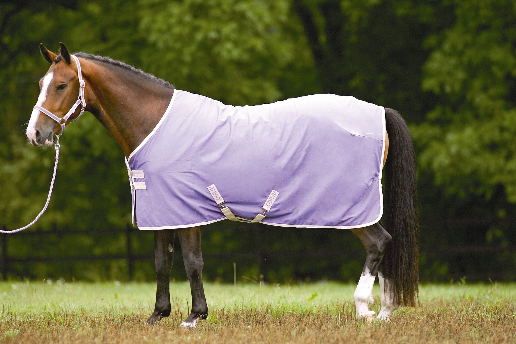 Horseware Amigo Pony Summer Sheet/Travel Rug