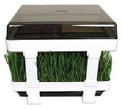 keimger t das gesunde lexen keimger t ebay. Black Bedroom Furniture Sets. Home Design Ideas